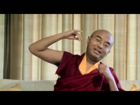 What Meditation Really Is ~ Mingyur Rinpoche