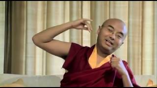 What Meditation Really Is: Mingyur Rinpoche