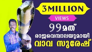 vava suresh caught his 99th king cobra   snake master ep 206 24 11 2016   kaumudy tv