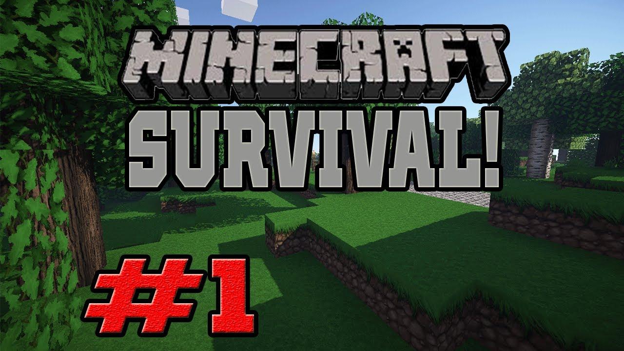 Amazon.com: Watch Clip: Minecraft Survival with Brick Show ...