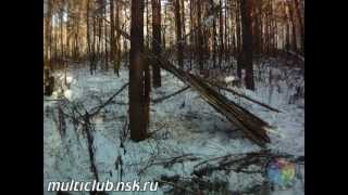 Выживание - без палатки зимой в -30C