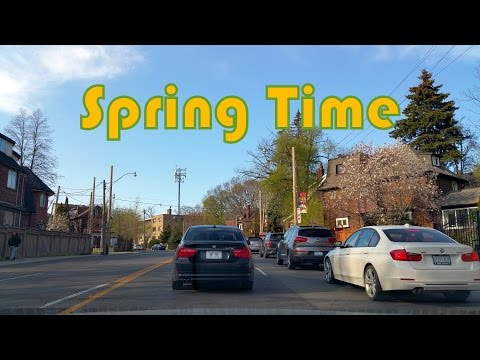 Spring Time Driving in Toronto