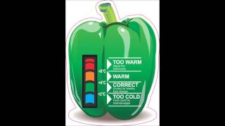 Easy Read Fridge Thermometer