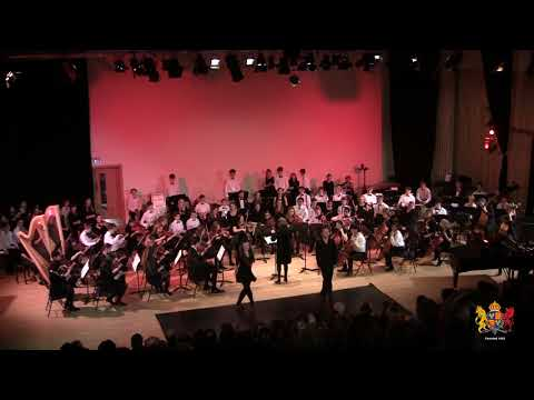 Chamber Orchestra - Cry of the Celts