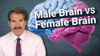 Stossel: The Science Around Male Brains vs. Female Brains