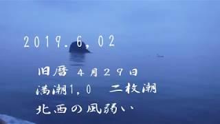 五目釣りの二枚潮