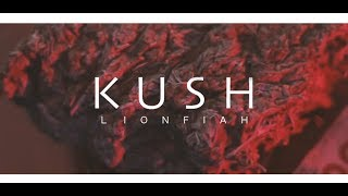 LION FIAH / KUSH (PRO.OSSE) 2017