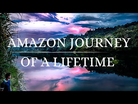 Teachings from the Amazon rainforest