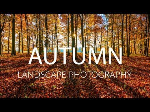 AUTUMN LANDSCAPE PHOTOGRAPHY Tips and Techniques