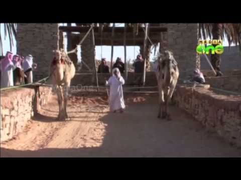 Saudi Govt to protect prominent antiquities including Marid Castle
