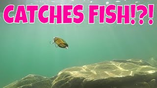 Video SMALLMOUTH BASS LOVE spoons !?!!?! download MP3, 3GP, MP4, WEBM, AVI, FLV Oktober 2018