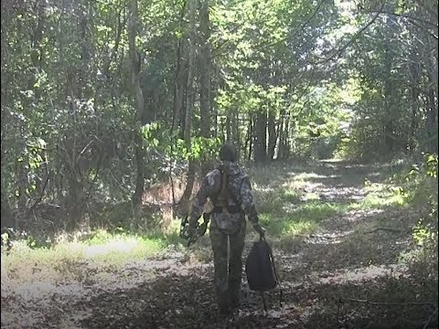 Doe Vs Bear Cruzer G2 (1st Bow Kill)