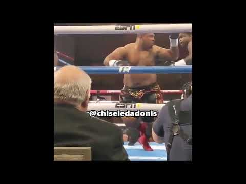 Boxer Goes Swimming After Uppercut