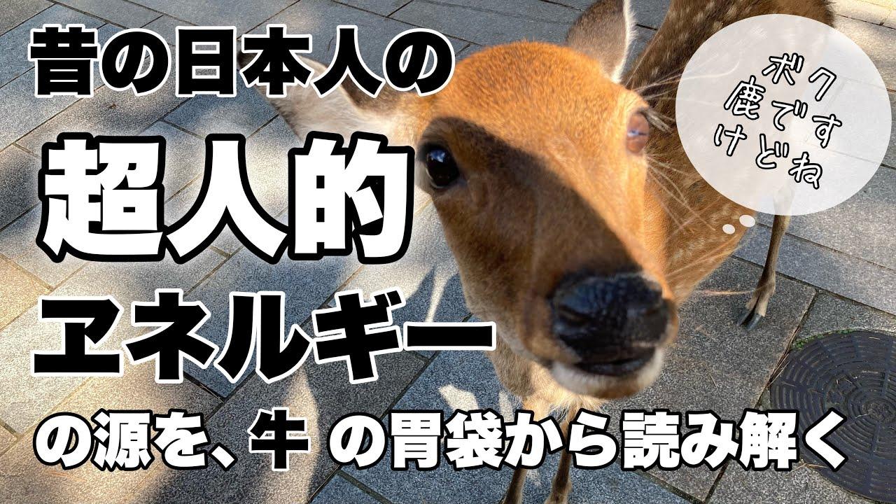 裏LOST ENERGY?牛の胃から読み解く昔の日本人のエネルギー!?