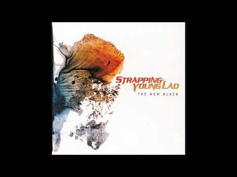 "Strapping Young Lad - ""Far Beyond Metal"""