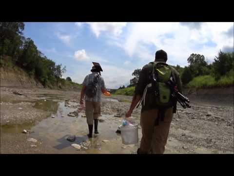 Ladonia Fossil Park