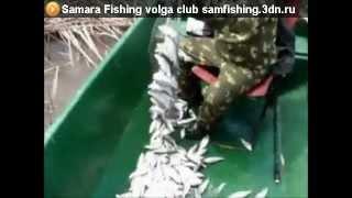 Рыбалка - это дело! Зачем удочка, когда есть подсак!.mp4