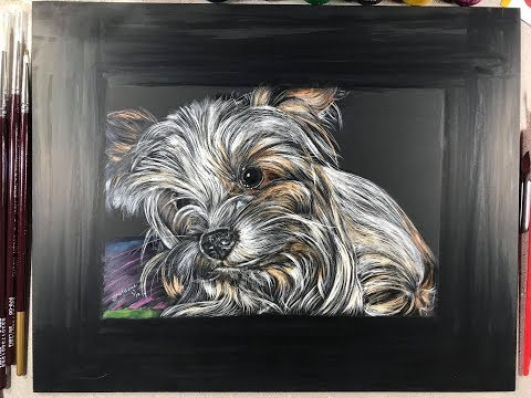 REAL-TIME: Using Ambersand scratchboard to draw a small dog