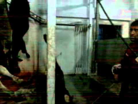 Kurban Bayramı 2011 - Bursa Alaattinbey Hayvan Pazarı Kesimhane --- Celiller Ailesi Kurban Kesimi