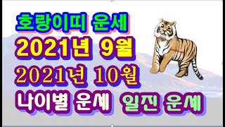 10월 호랑이띠 운세 - 2021년 9월 10월 신축년 무술월 호랑이띠 일진 사주 운세보기