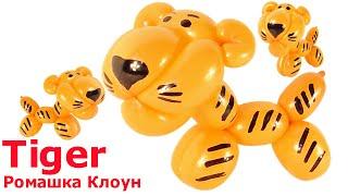 ТИГРЁНОК тигр ИЗ длинного ШАРИКА ШДМ  Tiger Balloon Animal TUTORIAL