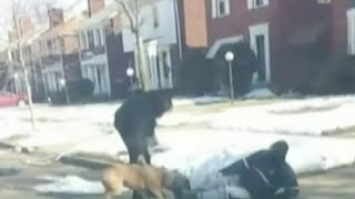 Video shows vicious dog attack on Detroit's west side