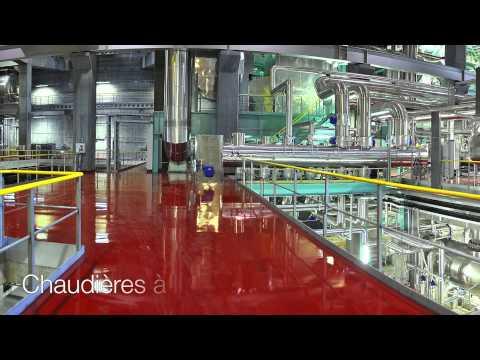 Bertsch Energy - Urmatt biomass cogeneration plant