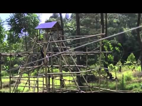 The Aspinall Foundation - Java Primate Project