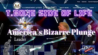 T BONE SIDE OF LIFE (America's Bizarre Plunge)
