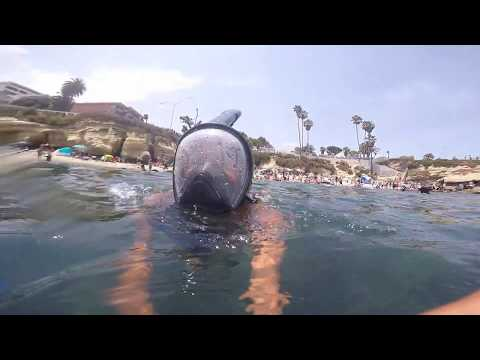 I GOT ATTACKED BY A SEAL THREE TIMES!!!(LA JOLLA COVE) MUST SEE