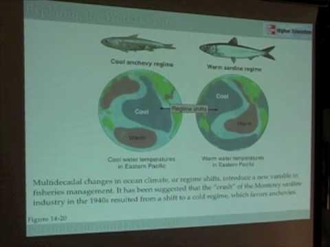 Ocean Food Webs - Ecosystem-Based Management