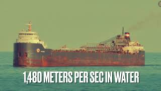 Marine Noise Pollution by Emma L. & Matthew from St. Michaels University School