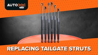 How to replace Tailgate gas struts on - video tutorial