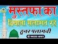 Mustafa Ka Diwana Salamat Rahe Hunar Palamvi Naat