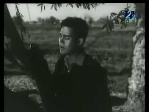 فاتوك الحبايب -  محرم فؤاد   Moharam Fouad - Fatouk El Habayeb