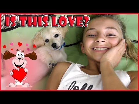 IS THIS PUPPY LOVE? | WE NEED YOUR HELP! |...
