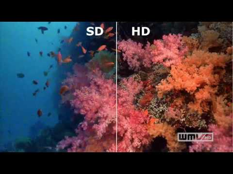 SD vs. HD in video resolution (sharp distinction)