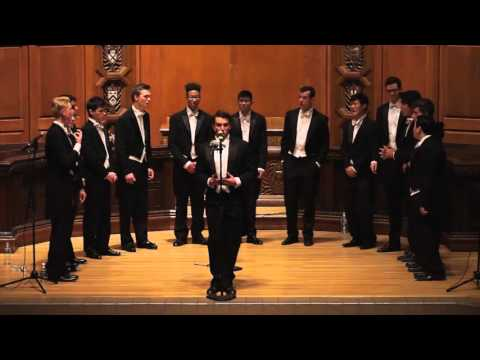 Rainbow Connection - The Yale Whiffenpoofs of 2016