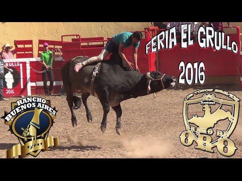 PORRAZERA!!! RANCHO GRANO DE ORO Y RANCHO BUENOS AIRES EN LA FERIA EL GRULLO 2016