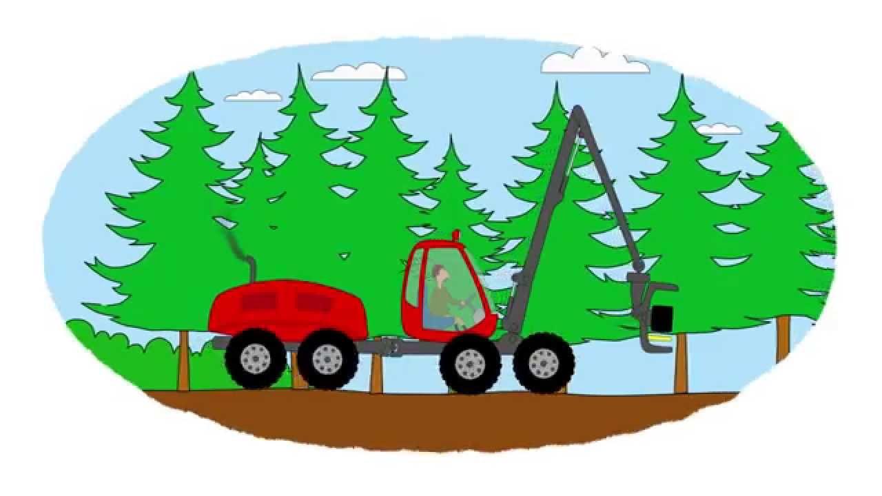 Das Zeichentrick Malbuch Traktoren Die Im Wald Arbeiten