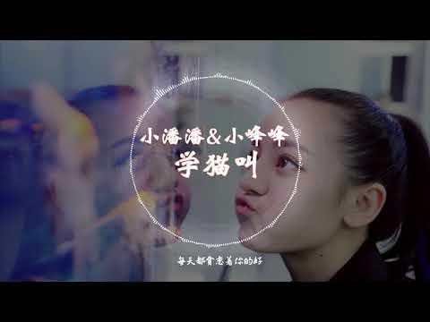 【抖音神曲】 小潘潘 & 小峰峰-《学猫叫》 动态歌词版本 【想要变成你的猫,赖在你怀里睡着...】