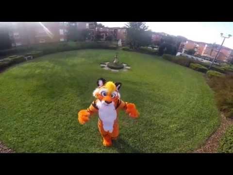 Air Balloon Furry Music