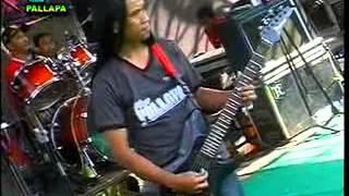 NEW PALLAPA BUNGA DAHLIA TASYA BALAUKA RECORD