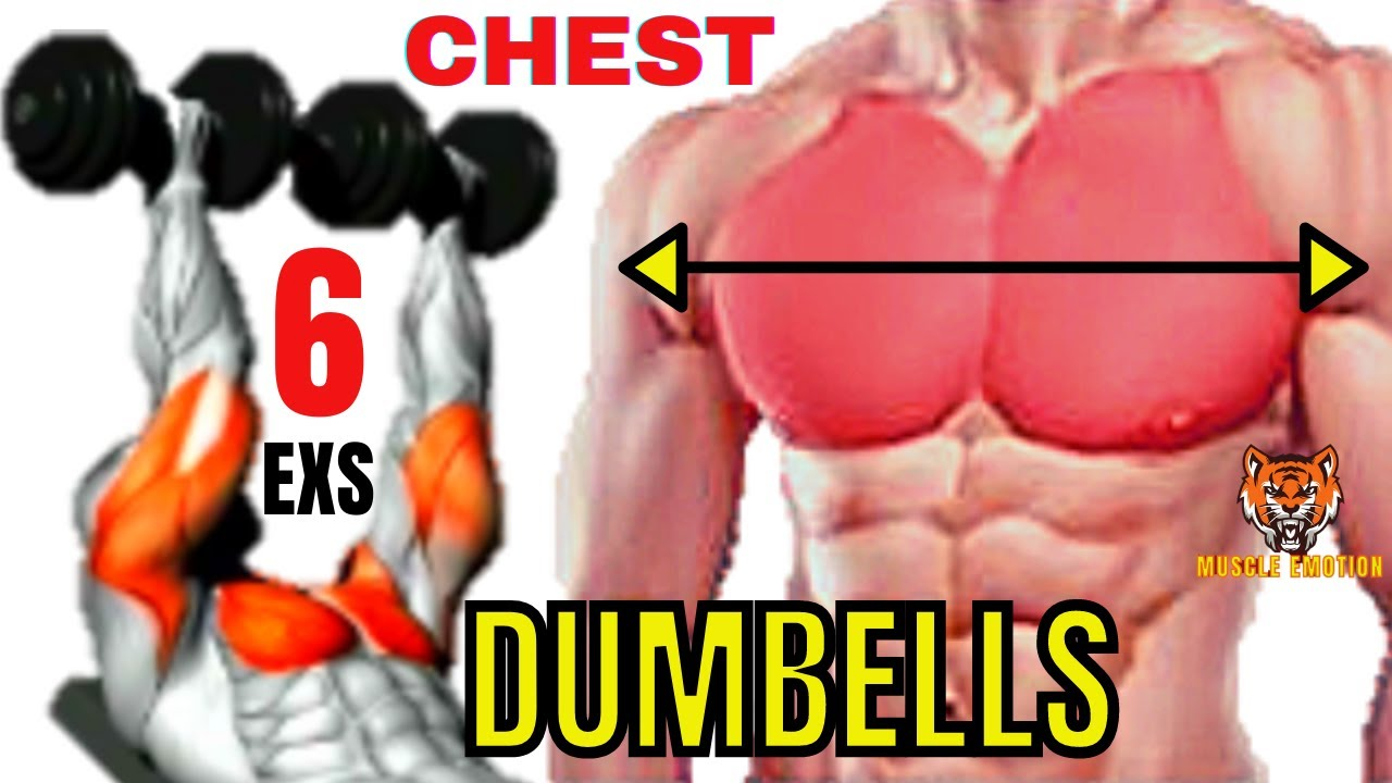 6 Effective Exercises To Build Big Chest Fast