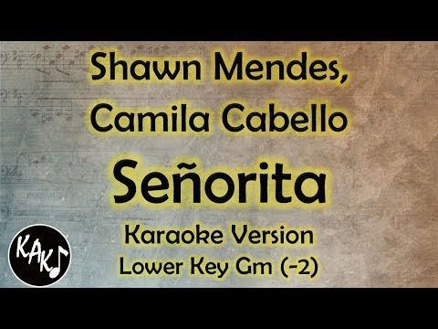 Senorita Lyrics Karaoke Lower Key
