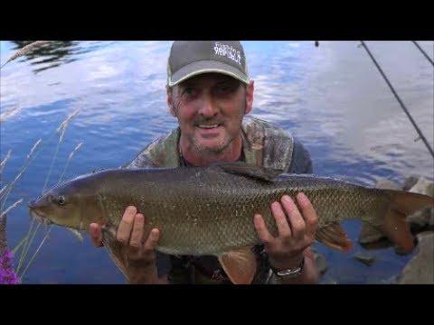 BARBEL FISHING RIVER TRENT FISKERTON - VIDEO 53