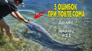 НЕ СОВЕРШАЙ эти 5 ОШИБОК при ЛОВЛЕ СОМА советы начинающим Виталий Дальке о рыбалке 11