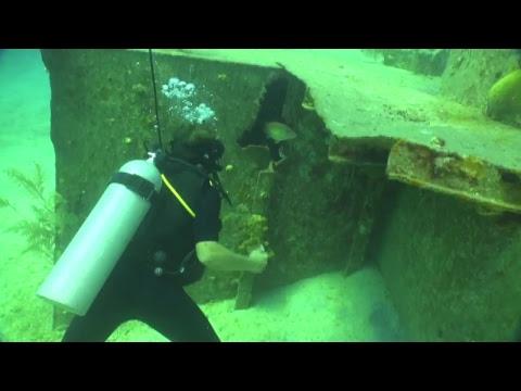 diveLIVE - Second Dive - June 30th, 2018