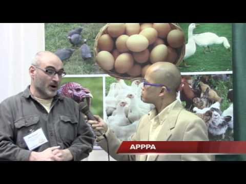 APPPA - Organic Producer 2014