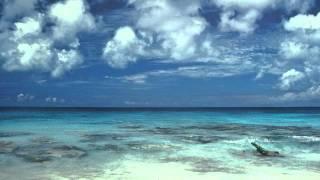 JEAN MICHEL JARRE - EN ATTENDANT COUSTEAU    / Full /